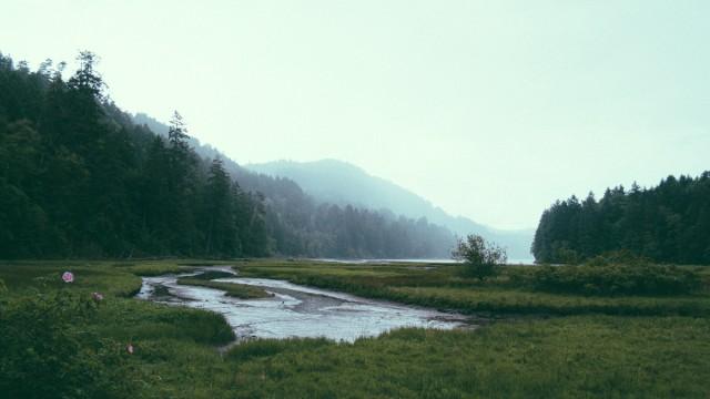 Norra Skogsägarna