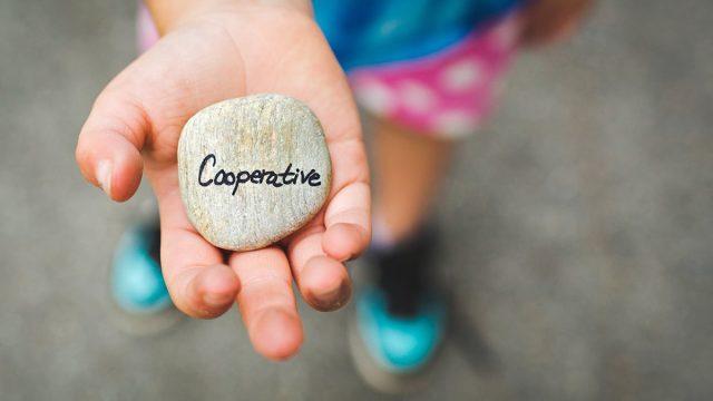 Majoritet positiv till kooperativa företag