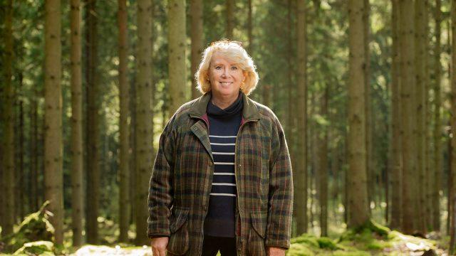 Lena Ek, Södra Skogsägarna